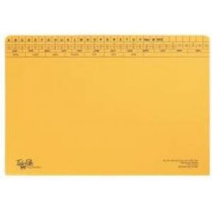 Picture of Tokai Foolscap Medium Weight File (15mm)